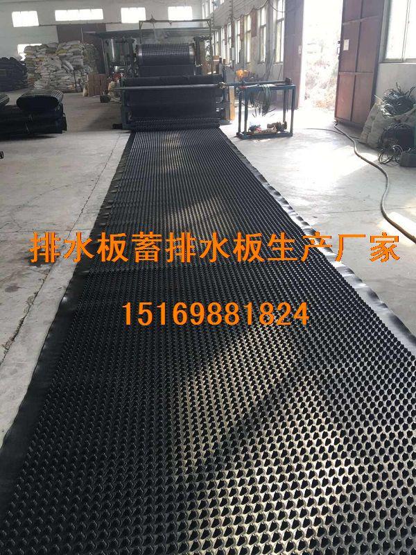 甘肃%兰州1.5公分3公分2公分车库蓄排水板