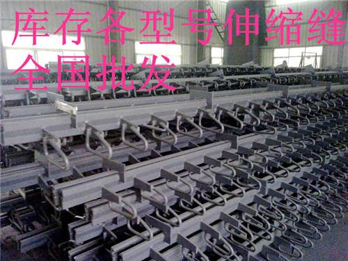 邵阳 桥梁伸缩缝C40/60/80价格  服务周到  衡水泰成