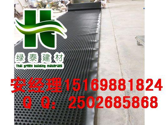 长春3公分2.5公分2公分蓄排水板价格15169881824