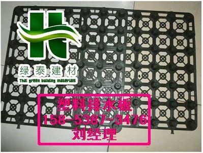 商洛车库塑料透水板∮供应5公分植草格15853873476
