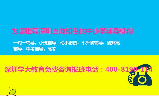深圳一对一初高中辅导班有哪些高一补课多少钱