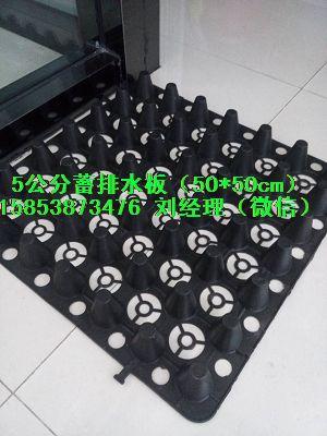 厂家推荐:12厚车库排水板△南宁地下室蓄排水板