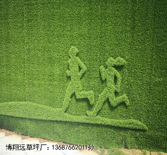 墙面20毫米人造草坪