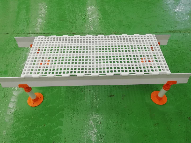 5040雞用漏糞板小雞漏屎板雞鴨鵝圈舍塑料底板養殖設備